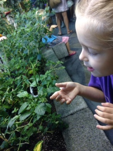 It's hell trying to keep kids from touching butterflies when they are RIGHT THERE.
